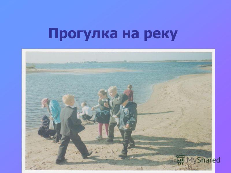 Прогулка на реку