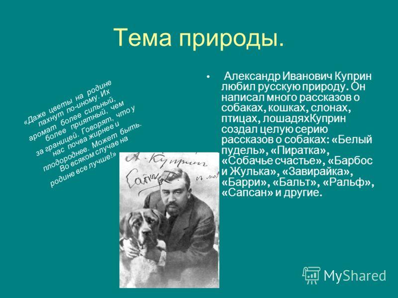 Тема природы. Александр Иванович Куприн любил русскую природу. Он написал много рассказов о собаках, кошках, слонах, птицах, лошадяхКуприн создал целую серию рассказов о собаках : « Белый пудель », « Пиратка », « Собачье счастье », « Барбос и Жулька