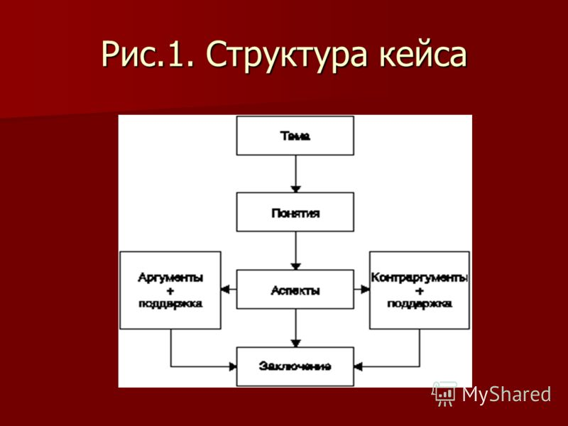 Рис.1. Структура кейса