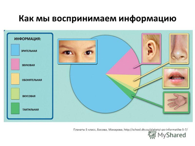 Как мы воспринимаем информацию Плакаты 5 класс, Босова, Макарова, http://school.dtv.su/plakatyi-po-informatike-5-7/