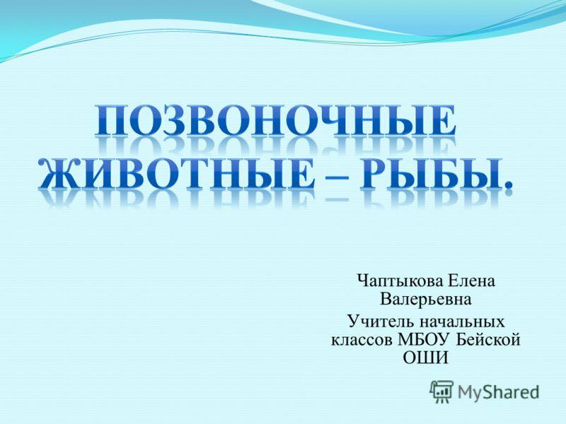 Чаптыкова Елена Валерьевна Учитель начальных классов МБОУ Бейской ОШИ