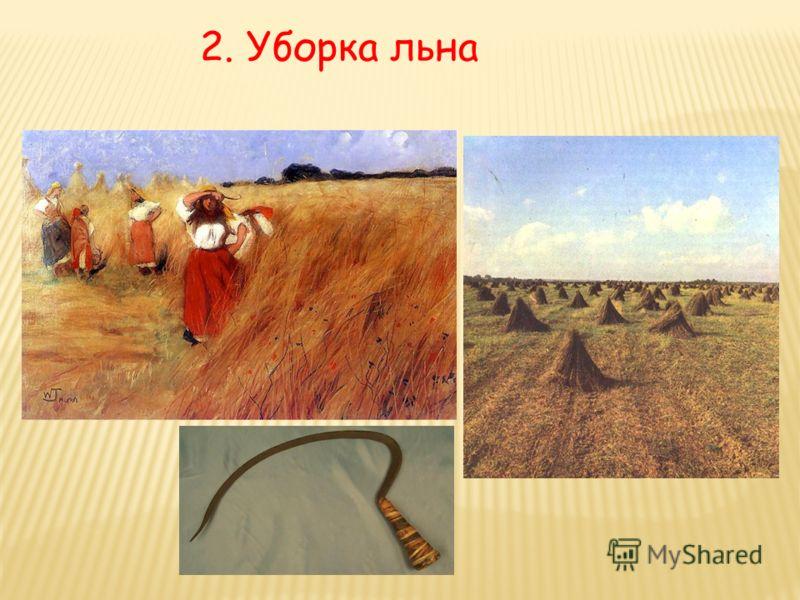 2. Уборка льна