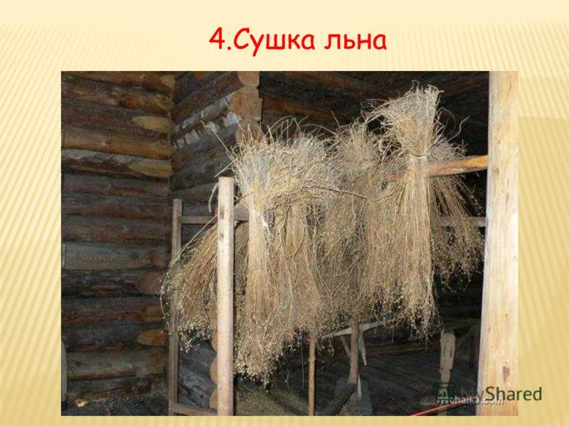 4.Сушка льна