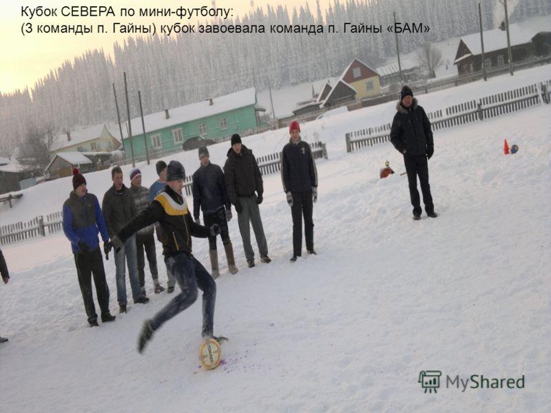 Кубок СЕВЕРА по мини-футболу: (3 команды п. Гайны) кубок завоевала команда п. Гайны «БАМ»