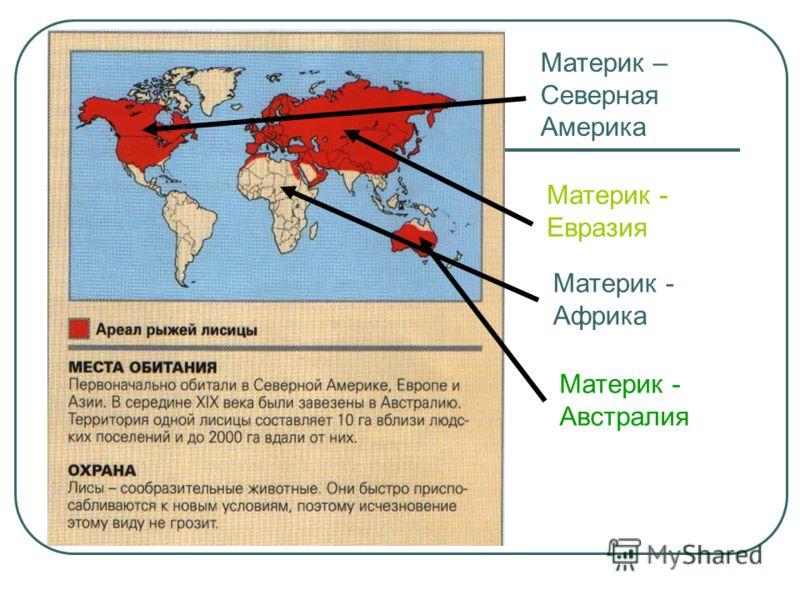 Материк – Северная Америка Материк - Евразия Материк - Африка Материк - Австралия