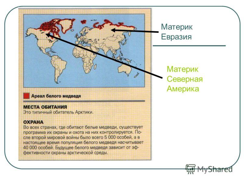 Материк Евразия Материк Северная Америка