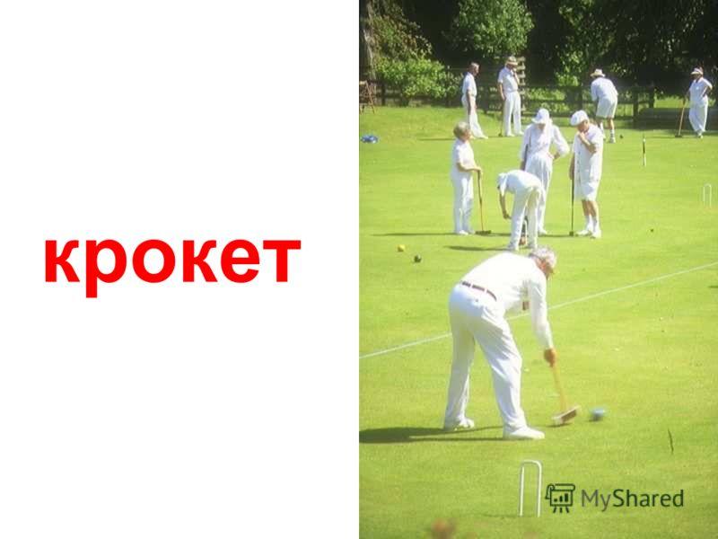 крикет Крикет.