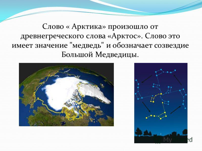 Слово « Арктика» произошло от древнегреческого слова «Арктос». Слово это имеет значение медведь и обозначает созвездие Большой Медведицы.