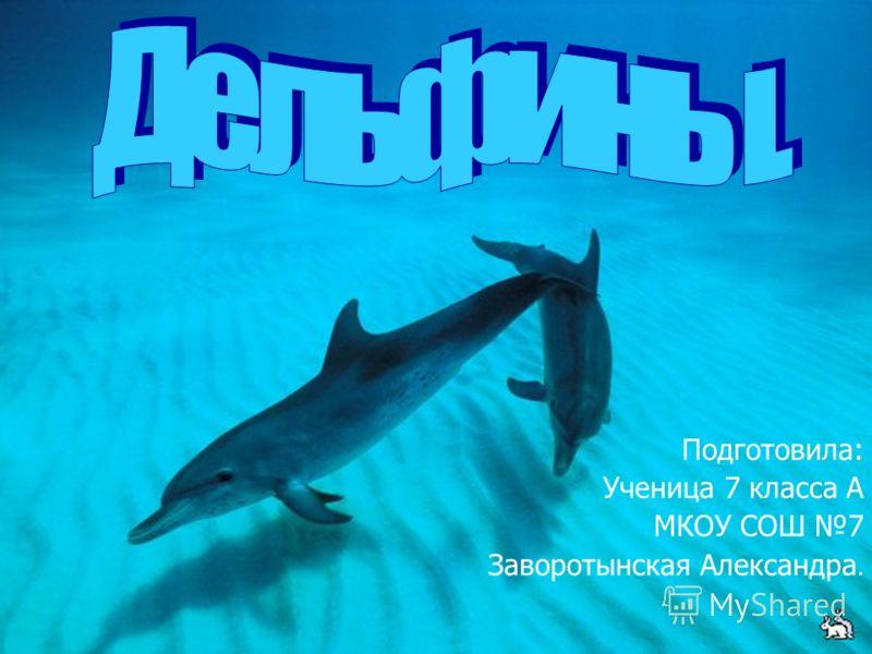 Подготовила: Ученица 7 класса А МКОУ СОШ 7 Заворотынская Александра.