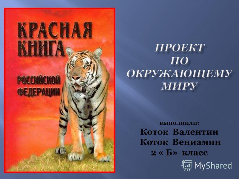 выполнили: Коток Валентин Коток Вениамин 2 « Б» класс