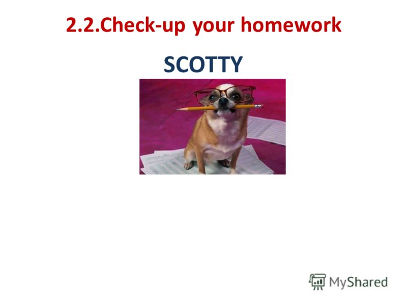 2.2.Check-up your homework SCOTTY