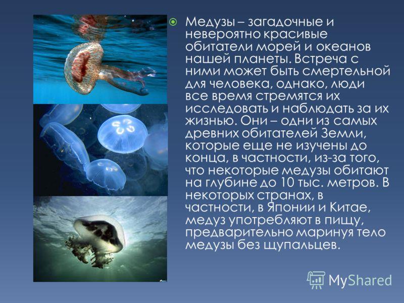 Медузы – загадочные и невероятно красивые обитатели морей и океанов нашей планеты. Встреча с ними может быть смертельной для человека, однако, люди все время стремятся их исследовать и наблюдать за их жизнью. Они – одни из самых древних обитателей Зе