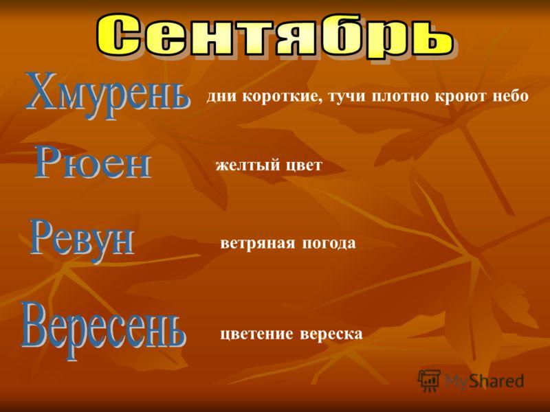 желтый цвет ветряная погода цветение вереска дни короткие, тучи плотно кроют небо