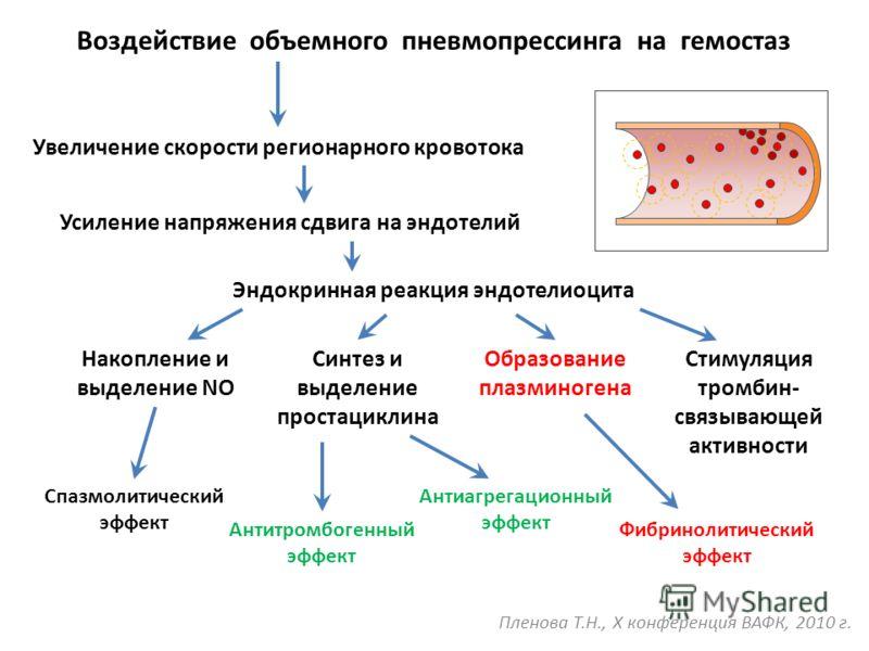 Воздействие объемного пневмопрессинга на гемостаз Увеличение скорости регионарного кровотока Усиление напряжения сдвига на эндотелий Эндокринная реакция эндотелиоцита Накопление и выделение NO Синтез и выделение простациклина Образование плазминогена