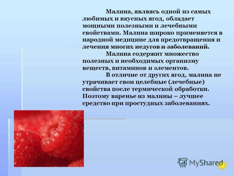 Лук обладает бактерицидными и антисептическими свойствами, борется с вирусами и накапливает в себе живительную энергию земли. Лук улучшает аппетит, усвоение пищи, повышает сопротивляемость организма к инфекционным заболеваниям.