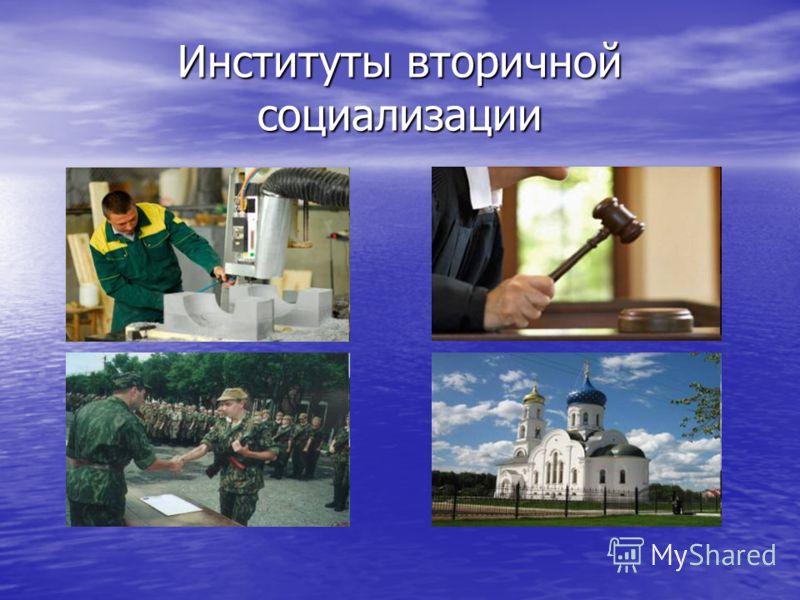 Институты вторичной социализации