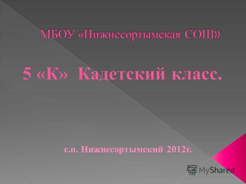 с.п. Нижнесортымский 2012г.