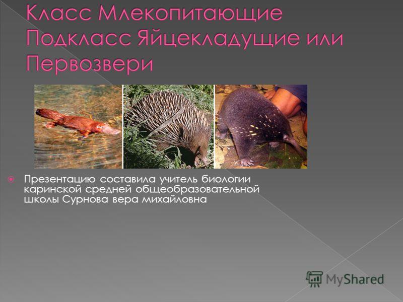 Презентацию составила учитель биологии каринской средней общеобразовательной школы Сурнова вера михайловна