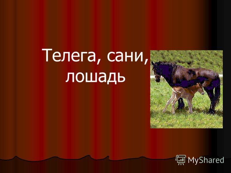 Телега, сани, лошадь