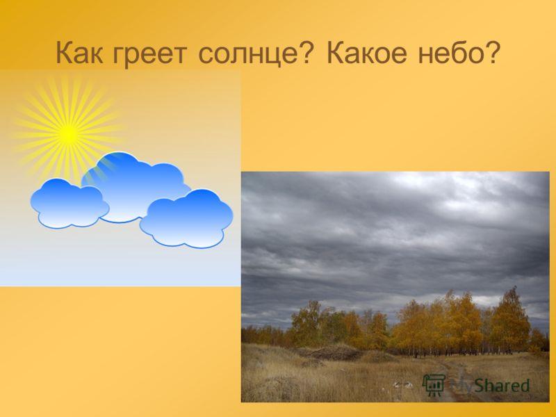 Как греет солнце? Какое небо?