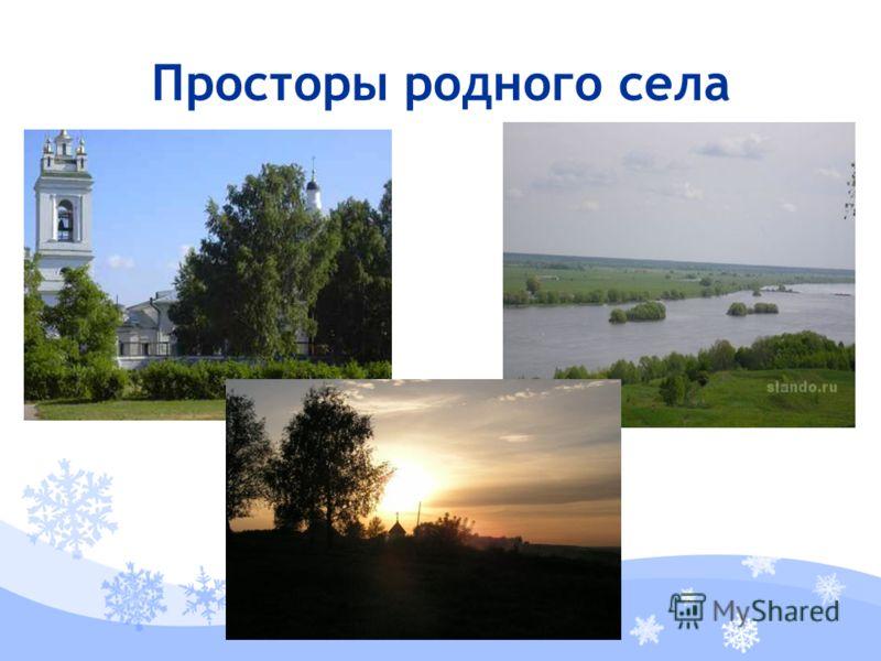 Просторы родного села
