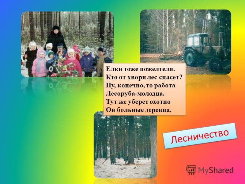 Лесничество Елки тоже пожелтели. Кто от хвори лес спасет? Ну, конечно, то работа Лесоруба-молодца. Тут же уберет охотно Он больные деревца.