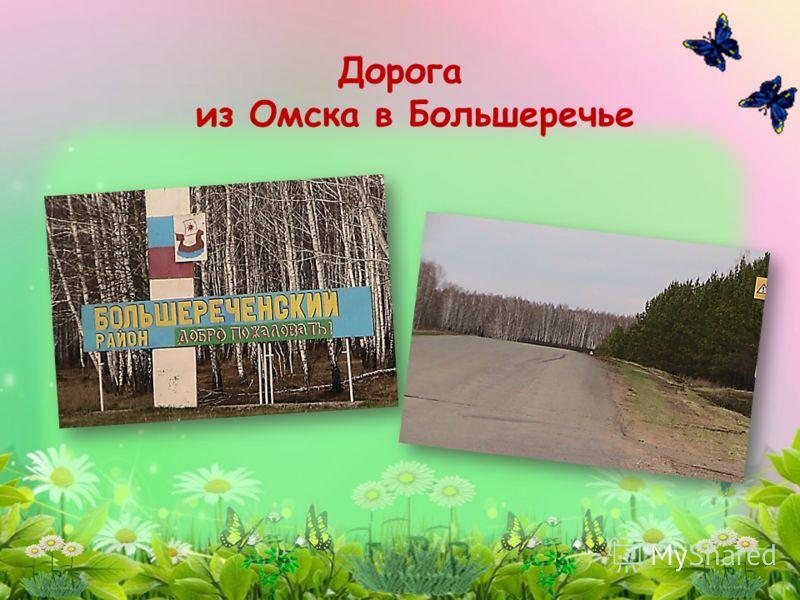 Дорога из Омска в Большеречье