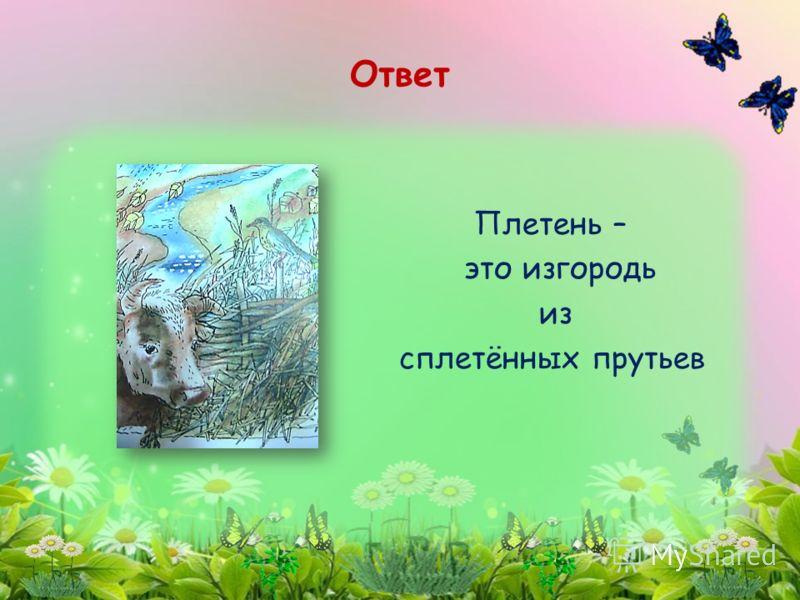 Плетень – это изгородь из сплетённых прутьев Ответ