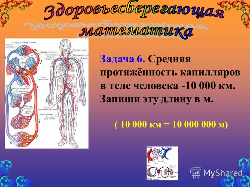 Задача 6. Средняя протяжённость капилляров в теле человека -10 000 км. Запиши эту длину в м. ( 10 000 км = 10 000 000 м)