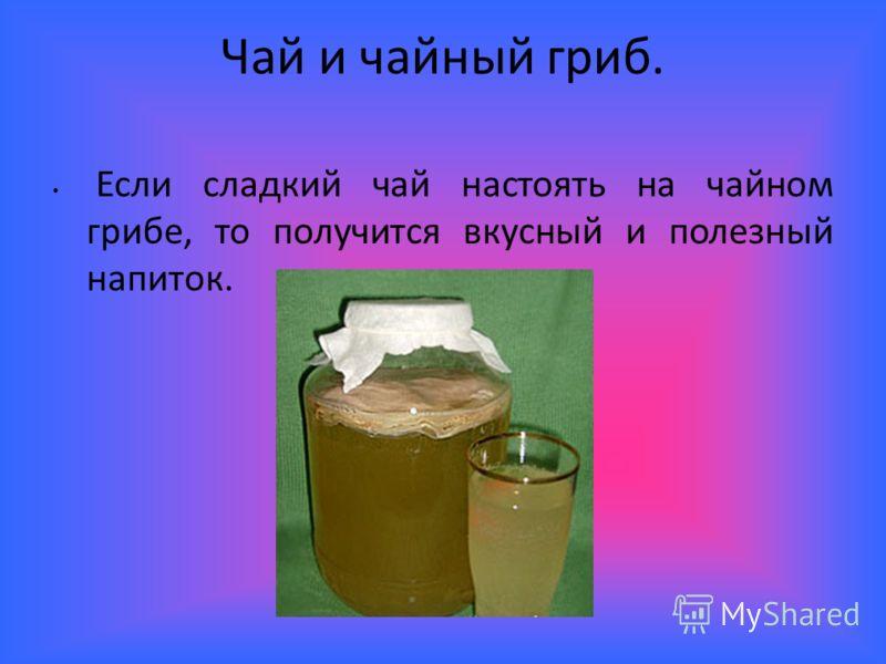 Чай и чайный гриб. Если сладкий чай настоять на чайном грибе, то получится вкусный и полезный напиток.