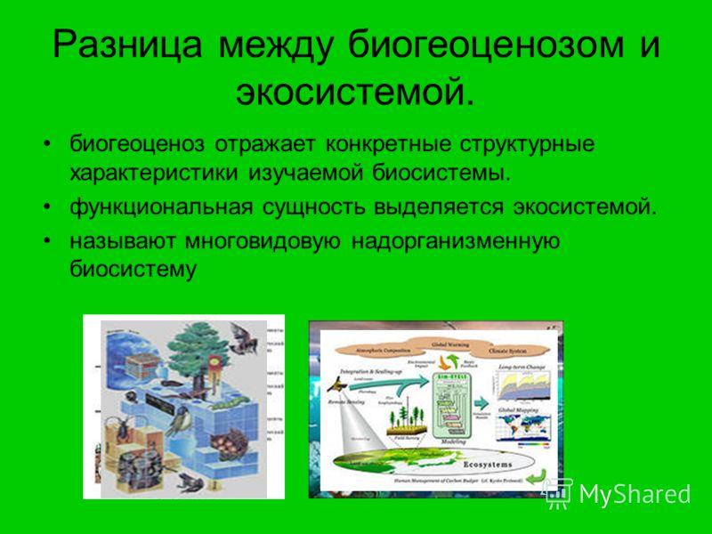 Разница между биогеоценозом и экосистемой. биогеоценоз отражает конкретные структурные характеристики изучаемой биосистемы. функциональная сущность выделяется экосистемой. называют многовидовую надорганизменную биосистему
