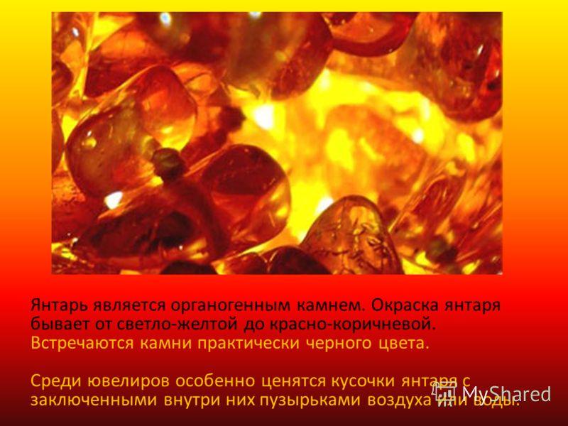 Янтарь является органогенным камнем. Окраска янтаря бывает от светло-желтой до красно-коричневой. Встречаются камни практически черного цвета. Среди ювелиров особенно ценятся кусочки янтаря с заключенными внутри них пузырьками воздуха или воды.