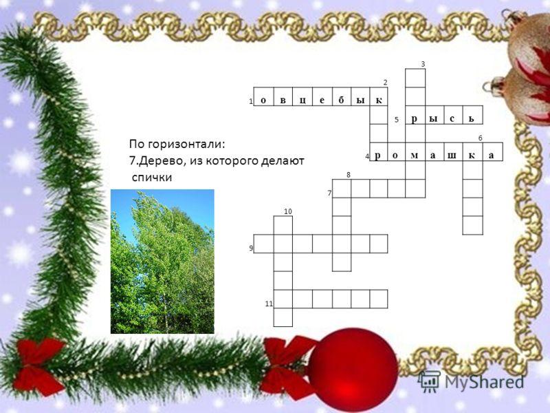 По горизонтали: 7.Дерево, из которого делают спички 3 2 1 овцебык 5 р ы с ь 6 4 р о м а ш к а 8 7 10 9 11