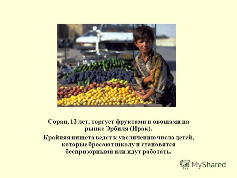 Соран, 12 лет, торгует фруктами и овощами на рынке Эрбиля (Ирак). Крайняя нищета ведет к увеличению числа детей, которые бросают школу и становятся беспризорными или идут работать.