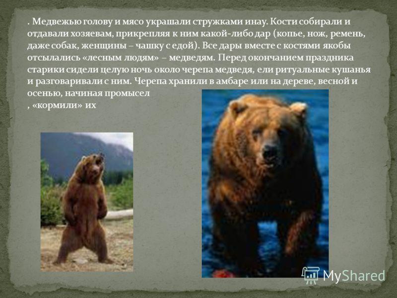 . Медвежью голову и мясо украшали стружками инау. Кости собирали и отдавали хозяевам, прикрепляя к ним какой-либо дар (копье, нож, ремень, даже собак, женщины – чашку с едой). Все дары вместе с костями якобы отсылались «лесным людям» – медведям. Пере