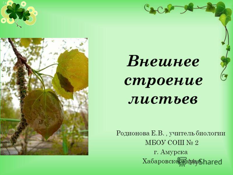 Внешнее строение листьев Родионова Е.В., учитель биологии МБОУ СОШ 2 г. Амурска Хабаровского края