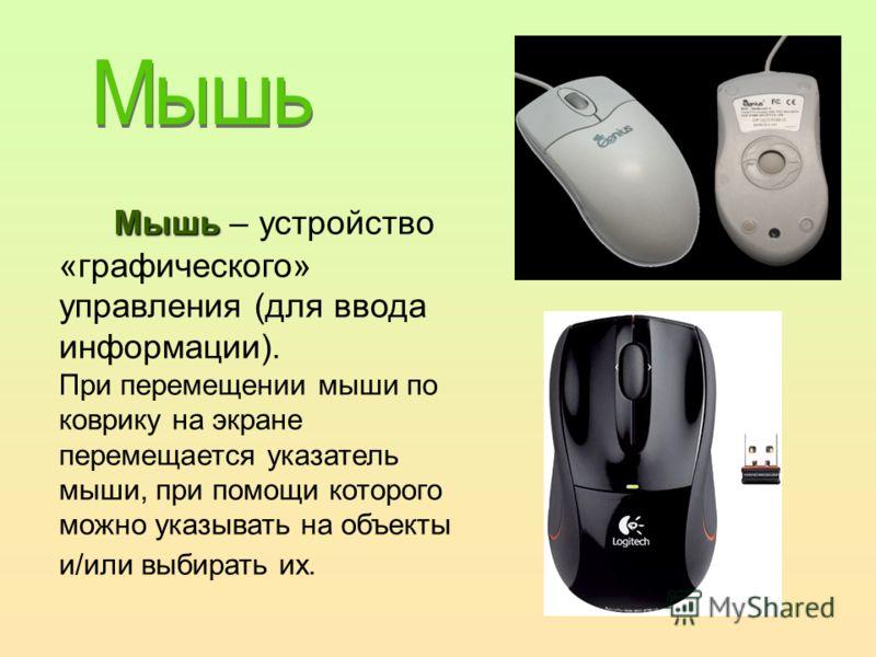 Мышь Мышь – устройство «графического» управления (для ввода информации). При перемещении мыши по коврику на экране перемещается указатель мыши, при помощи которого можно указывать на объекты и/или выбирать их.