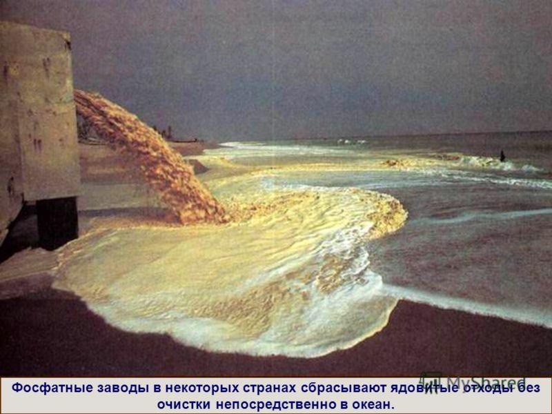 Фосфатные заводы в некоторых странах сбрасывают ядовитые отходы без очистки непосредственно в океан.