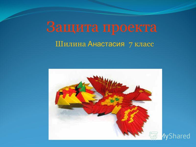 Защита проекта Шилина Анастасия 7 класс