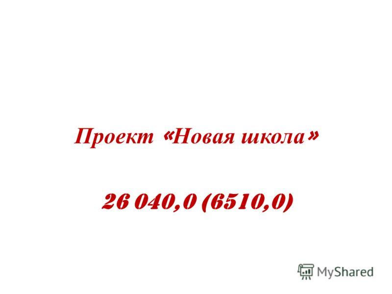 Проект « Новая школа » 26 040,0 (6510,0)