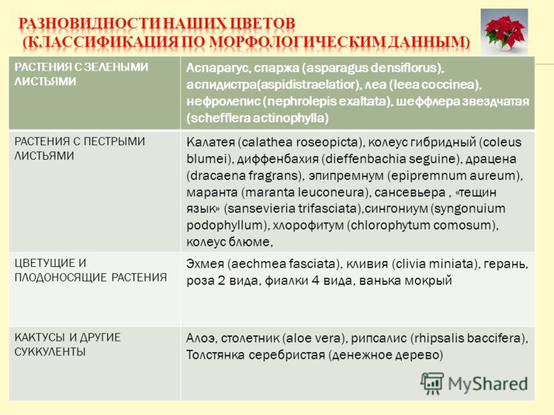 РАСТЕНИЯ С ЗЕЛЕНЫМИ ЛИСТЬЯМИ Аспарагус, спаржа (asparagus densiflorus), аспидистра(aspidistraelatior), леа (leea coccinea), нефролепис (nephrolepis exaltata), шеффлера звездчатая (schefflera actinophylla) РАСТЕНИЯ С ПЕСТРЫМИ ЛИСТЬЯМИ Калатея (calathe