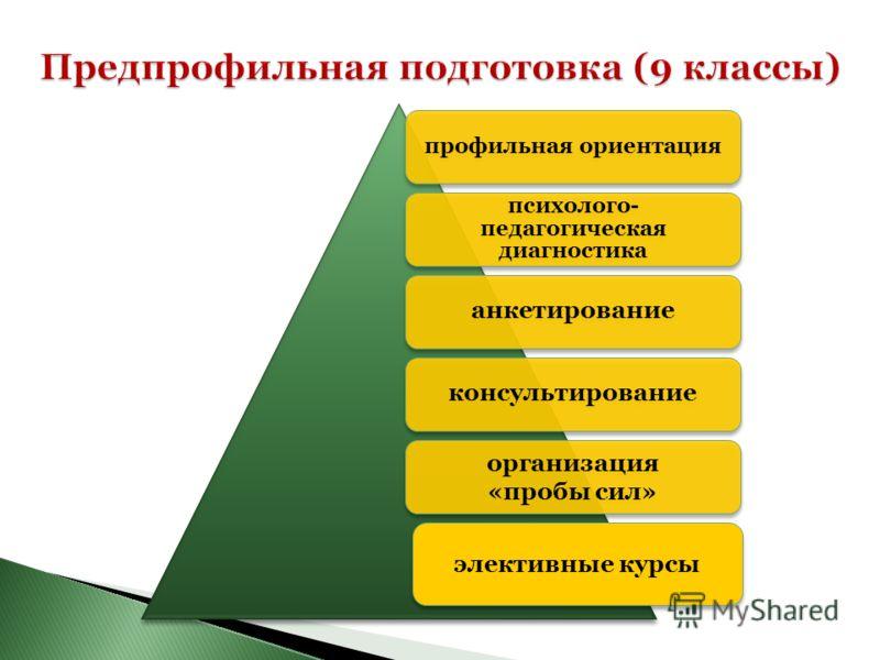 анкетированиеконсультирование организация «пробы сил» профильная ориентация психолого- педагогическая диагностика элективные курсы