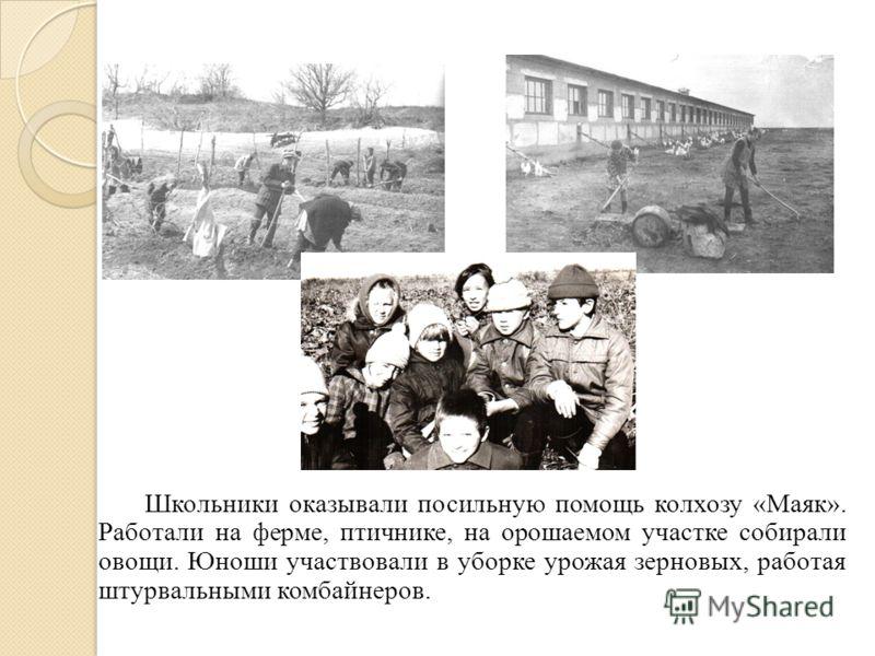 Школьники оказывали посильную помощь колхозу «Маяк». Работали на ферме, птичнике, на орошаемом участке собирали овощи. Юноши участвовали в уборке урожая зерновых, работая штурвальными комбайнеров.