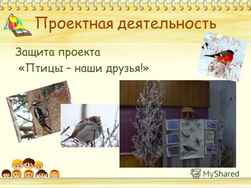 Проектная деятельность Защита проекта «Птицы – наши друзья!»