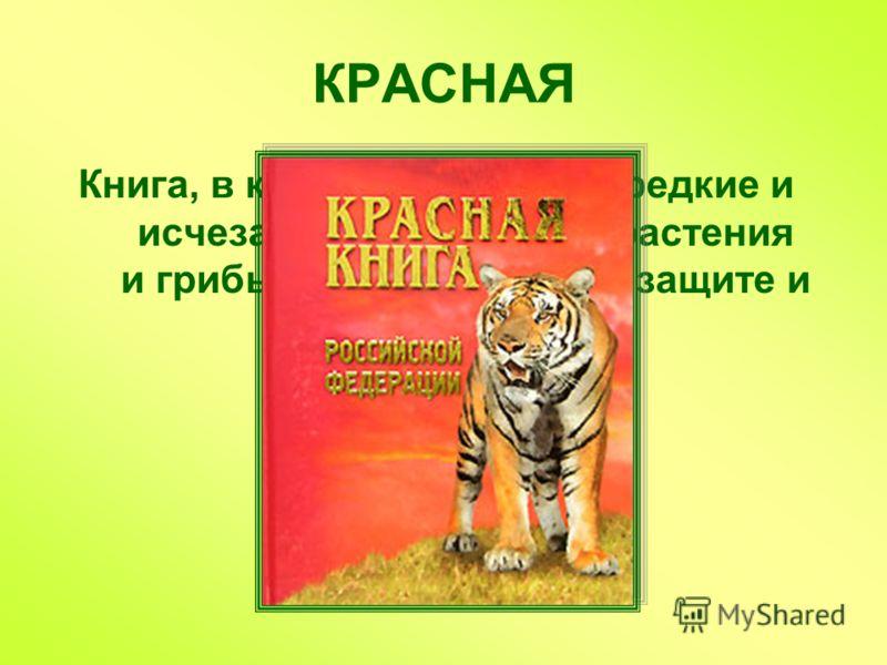 Книга, в которую занесены редкие и исчезающие животные, растения и грибы, нуждающиеся в защите и охране КРАСНАЯ