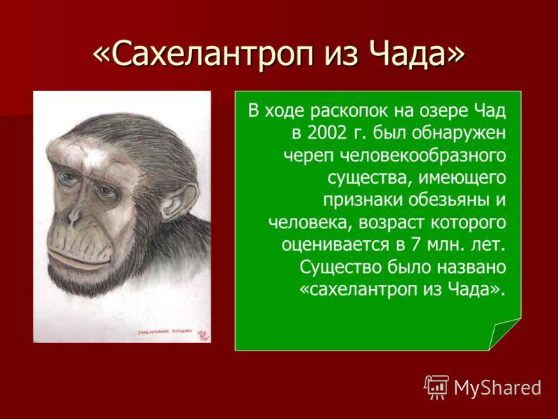 «Сахелантроп из Чада» В ходе раскопок на озере Чад в 2002 г. был обнаружен череп человекообразного существа, имеющего признаки обезьяны и человека, возраст которого оценивается в 7 млн. лет. Существо было названо «сахелантроп из Чада».