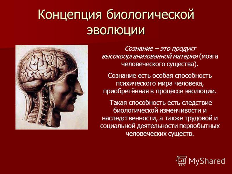 Концепция биологической эволюции Сознание – это продукт высокоорганизованной материи (мозга человеческого существа). Сознание есть особая способность психического мира человека, приобретённая в процессе эволюции. Такая способность есть следствие биол