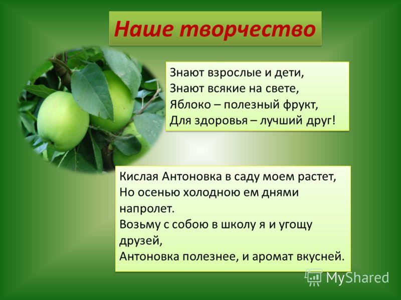 Знают взрослые и дети, Знают всякие на свете, Яблоко – полезный фрукт, Для здоровья – лучший друг! Знают взрослые и дети, Знают всякие на свете, Яблоко – полезный фрукт, Для здоровья – лучший друг! Наше творчество Кислая Антоновка в саду моем растет,
