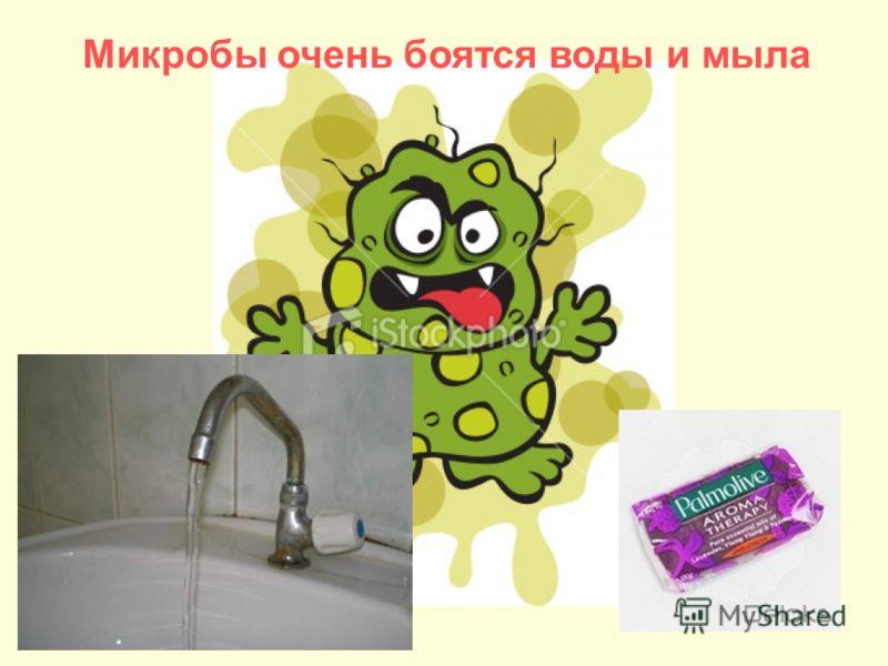 Микробы очень боятся воды и мыла