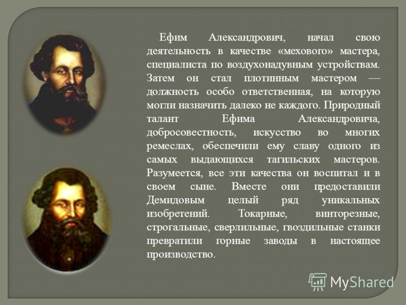 Ефим Александрович, начал свою деятельность в качестве «мехового» мастера, специалиста по воздухонадувным устройствам. Затем он стал плотинным мастером должность особо ответственная, на которую могли назначить далеко не каждого. Природный талант Ефим
